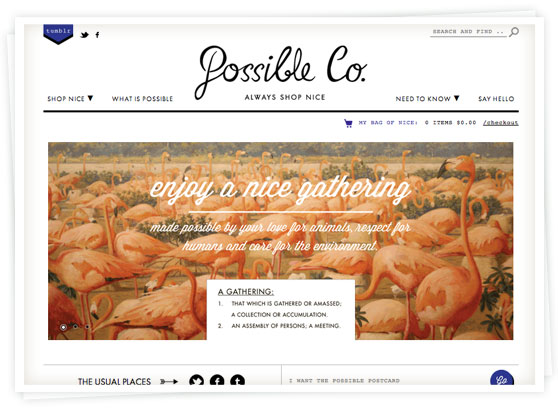 The Possible Co. Online Store